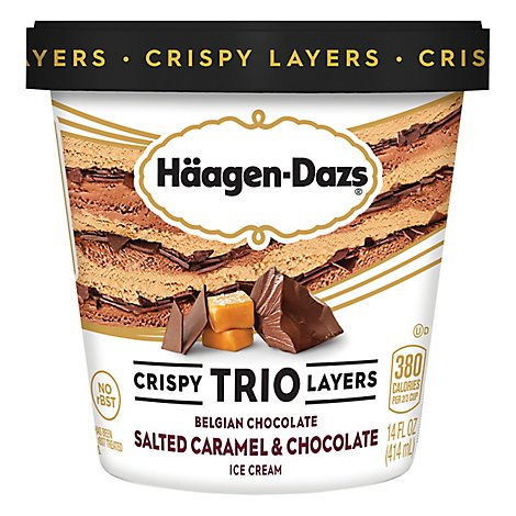 Haagen-Dazs Ice Cream Trio Salted Caramel Chocolate - 14 Fl. Oz.