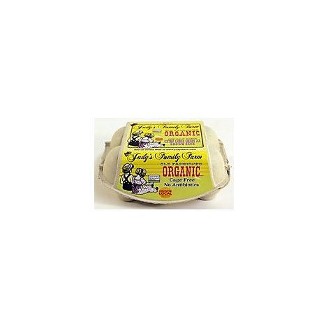 Judys Organic Extra  Large Egg - 6 Count