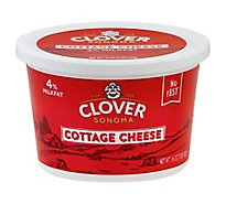 Clover Cottage Cheese Small Curd - 16 Oz