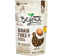 Beyond Cat Snacks Grain Free Chicken & Egg Recipe Pouch - 2.1 Oz