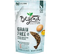 Beyond Cat Snacks Grain Free Ocean Whitefish & Egg Recipe Pouch - 2.1 Oz