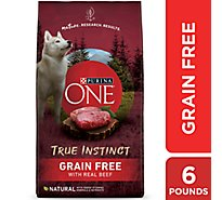 Purina ONE SMARTBLEND Dog Food Adult Premium with Real Beef & Sweet Potato Bag - 6 Lb