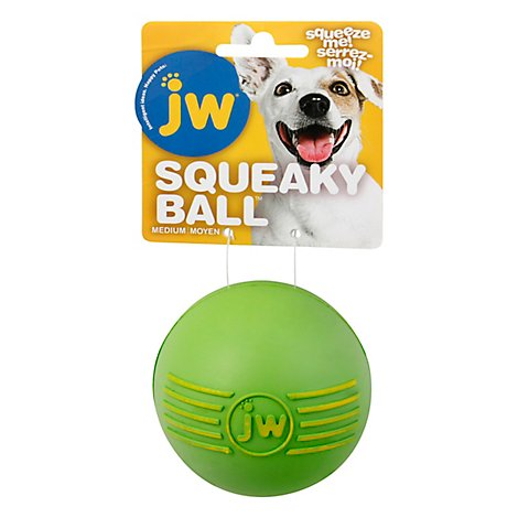 JW Pet Isqueak Ball Medium - Each