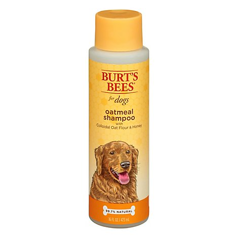 Burts Bees For Dogs Shampoo Oatmeal With Colloidal Oat Flour & Honey Bottle - 16 Fl. Oz.