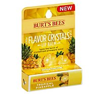 Burts Bees Lip Balm Pineapple - .16 Z
