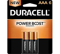 Duracell Coppertop Battery AAA - 6 Count