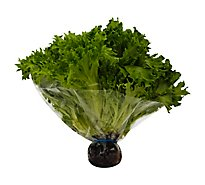 Petes Living Greens Green Leaf Lettuce - Each