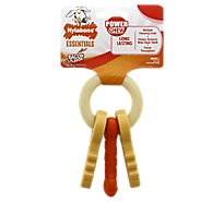 Nylabone Essentials Power Chew Dog Keys Bacon Flavor Small Card - Each