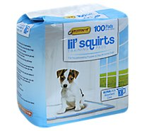 Ruffin It Lil Squirts Dog Training Pads Puppies 21x22 Inch Ultra Lock Absorbent Core - 100 Count