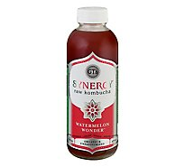 Gts Kombucha Synergy Watermelon Wonder - 16 Fl. Oz.