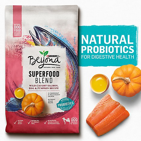 Beyond Dog Food Dry Superfood Salmon - 14.5 Lb