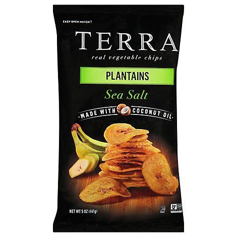 Terra Sea Salt Plantain Chips - 5 Oz