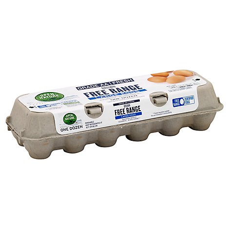 Open Nature Eggs Brown Free Range Large - 12 Count