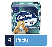 Charmin Flushable Wipes 4 Packs - 160 Count