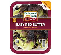 Earthbound Farm Baby Red Butter Organic - 5 Oz