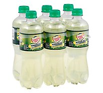 Canada Dry Ginger Ale And Lemonade - 6-16.9 Fl. Oz.
