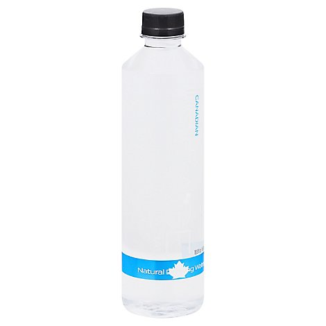 Ice Age Water Glacial - 16.9 Fl. Oz.
