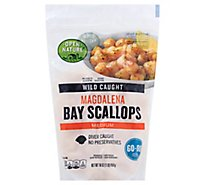 Open Nature Bay Scallops Magdalena Wild Caught Medium - 16 Oz