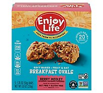 Enjoy Life Bar Brkfst Oval Berry - 8.8 Oz