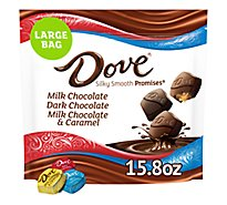 Dove Promises Variety Mix Chocolate Candy Bag 15.8 Oz