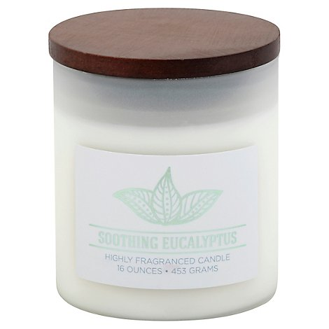 Mvp Wellness Soothing Eucalyptus - 16 Oz