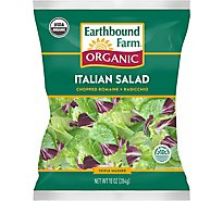 Earthbound Farm Organic Italian Salad Romaine & Radicchio - 10 Oz