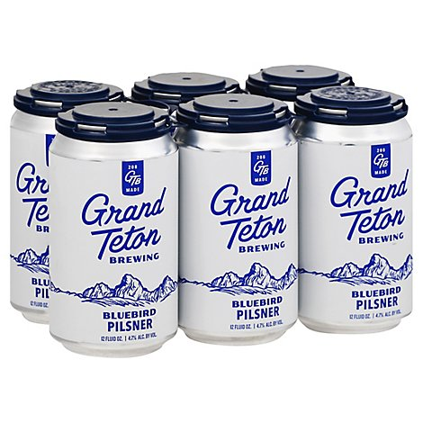 Grand Teton Black Cauldron Imp Stout In Cans - 6-12 Fl. Oz.