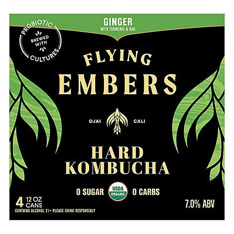 Flying Embers Ginger And Oak Kombucha - 6-12 Fl. Oz.