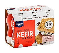 Lifeway Kefir Camp Smore Mini - 21 Fl. Oz.