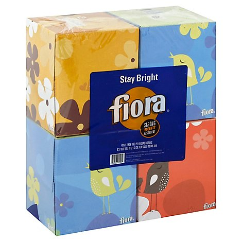 FIORA Facial Tissue 2 Ply Cube Box Pack - 4-80 Count