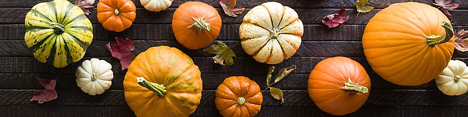 Alt Text: A variety of different types of pumpkin.